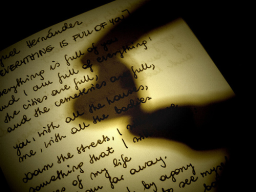 La lettera d'amore, di Cathleen Schine