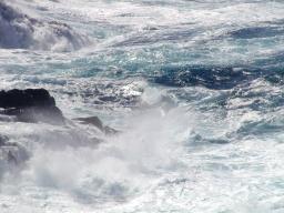 Morte in mare aperto, di Andrea Camilleri