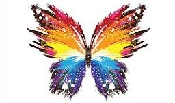 La farfalla asimmetrica, di Paolo Codazzi