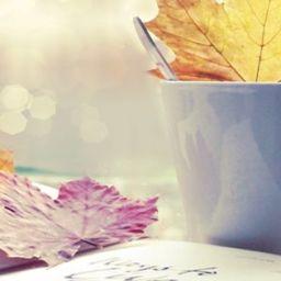Saranno scrittori – Concorsi letterari: sì o no?